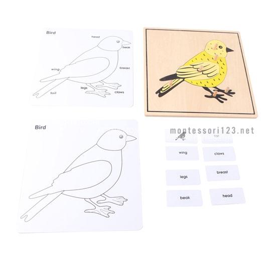 Bird_Puzzle_2.jpg