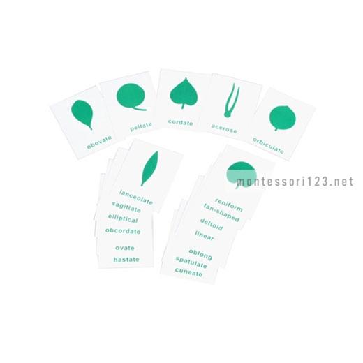Botany_Cabinet_Control_Chart_1.jpg