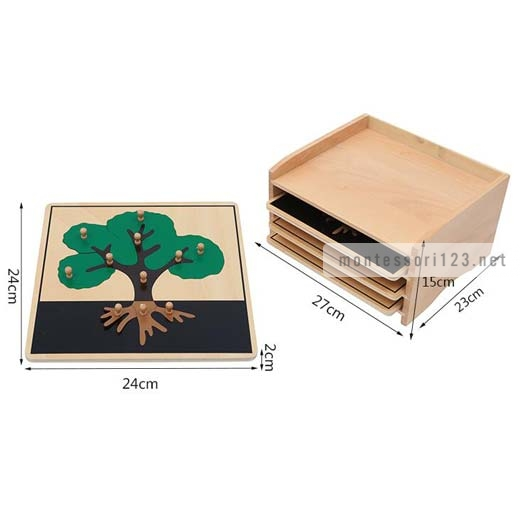 Botany_Puzzle_Cabinet_(3_Puzzles_Included)_2.jpg