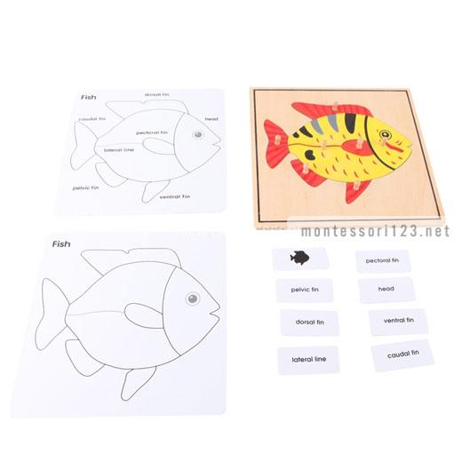 Fish_Puzzle_2.jpg