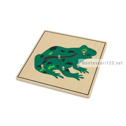 Frog_Puzzle_1.jpg