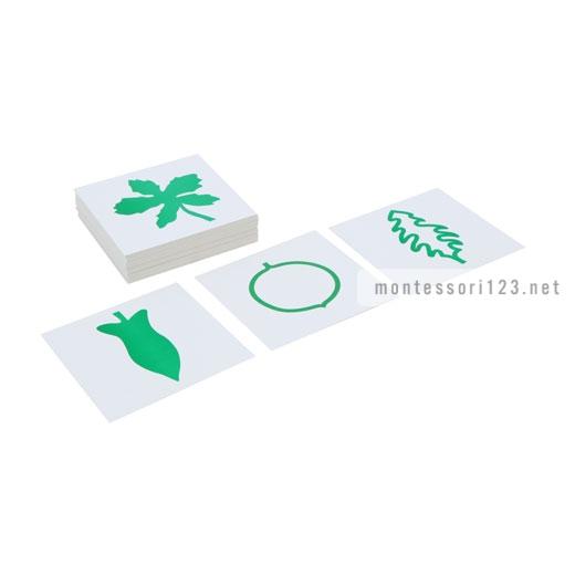 Leaf_Cards_1.jpg