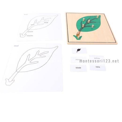 Leaf_Puzzle_3.jpg