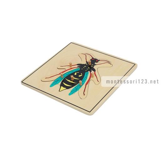 Wasp_Puzzle_1.jpg