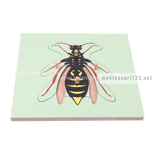 Wasp_Puzzle_3.jpg