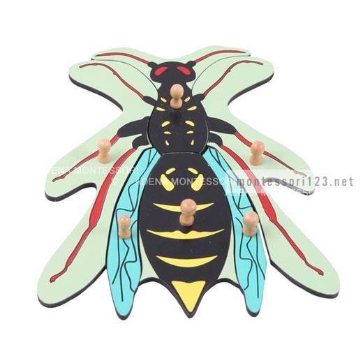 Wasp_Puzzle_9.jpg