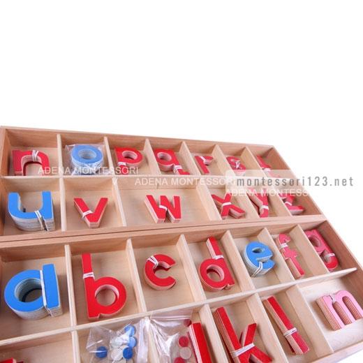 Wood_-_Large_Movable_Alphabet_(Red_&_Blue)_5.jpg
