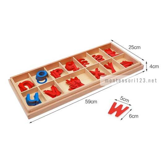 Wood_-_Large_Movable_Alphabet_(Red_&_Blue)_9.jpg