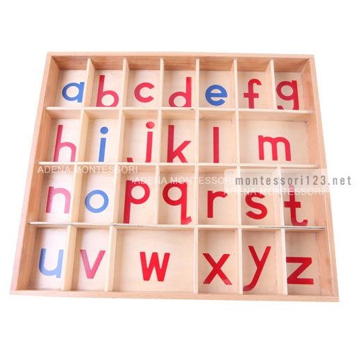 Wood_-_Small_Movable_Alphabet_(Red_&_Blue)_4.jpg